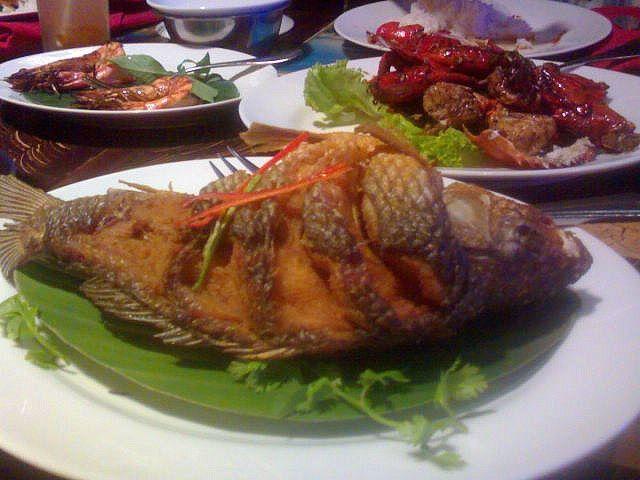 manfaat makan ikan mas